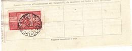 £100 DEMOCRATICA 29.11.50 RAGUSA CASSA PROV.P.T. - 1946-60: Marcophilia