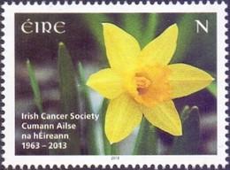 Ireland - Trumpet Daffodil (Narcissus Pseudonarcissus), Stamp, MINT, 2013 - Sonstige