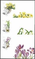 Croatia - Croatian Flora - Flowers, Set Of 3 Maximum Cards, 2012 - Sonstige