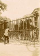 PARIS - Zoo De Vincennes - Luoghi