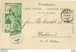 223 - 18 - Entier Postal UPU Cachets à Date Reute Et Wattwil 1900 - Entiers Postaux
