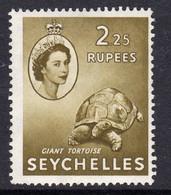Seychelles QEII 1954 2 Rupees 25 Giant Tortoise Definitive, Hinged Mint, SG 186 (B) - Seychelles (...-1976)