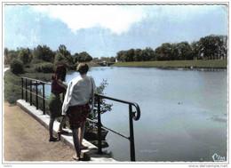 Carte Postale 58. Decize  Bords De Loire Trés Beau Plan - Decize