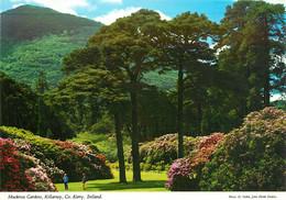 CPSM Muckross Gardens,Killarney,Kerry    L169 - Kerry