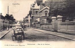 """CAPPELLEN-KAPELLEN """"STATIESTRAAT -HONDEKAR""""HOELEN NR522 UITGIFTE 1904 TYPE 3 - Kapellen"""