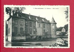 C.P. Bois-de-Lessines = Le  Château  Aile  Droite - Lessines