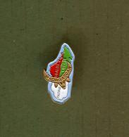 Pin's - Madagascar Taureau Buffle Carte - Other