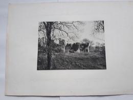 VENDEE - COMMEQUIERS - Les Ruines Du Château  .- Photogravue Robuchon 32x 46 - Historical Documents