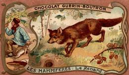 CHROMO CHOCOLAT GUERIN BOUTRON LES MAMMIFERES LE RENARD - Guerin Boutron