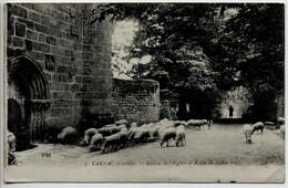CPA 19 TARNAC - Entrée De L'Eglise Et Route De NEDDE - Moutons - Other Municipalities