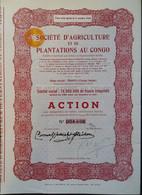 Soc. D,agriculture Et Plantations Au CONGO 1949 - Africa