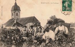 BUCEY-les-GY (Haute-Saône) - Les Vendanges. Edition Gaildraud. Circulée En 1905. 2 Scan. - Other Municipalities