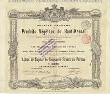Ancienne Action Congolaise - Société Anonyme Des Produits Végétaux Du Haut-Kassaî - Titre De 1895 - Déco - Africa