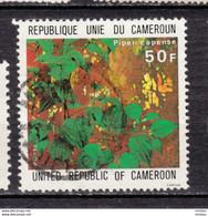 ##23, Cameroun, Cameroon, Poivre, Pepper, épice, Spice, Alimentation, Piper Capense - Camerun (1960-...)