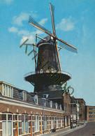 Dordrecht - Molen Kijkck Over Den Dijck  [Z31-0.655 - Sin Clasificación