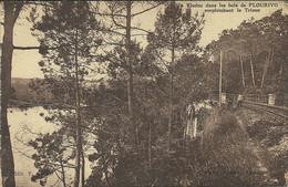 LOT DE  10 CP PONTRIEUX ET ENVIRONS - 5 - 99 Postcards