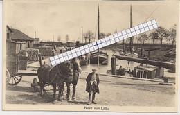 """LILLO-ANTWERPEN """"FOTOKAART DE HAVEN  MET PAARDENSPAN """"  FOTO;J.VAN HEESCH,DEURNE- 28.07.1949 - Antwerpen"""