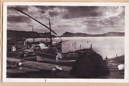 X83227 LE BRUSC Var Coucher De Soleil Sur LES EMBIERS 1950s  à VOLLAND Cc COQUILLAT Sourcieux-Mines Photo-Bromure VASSA - Otros Municipios