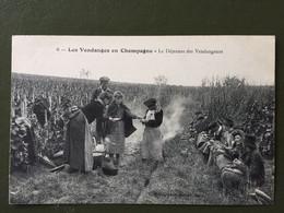 6  LES  VENDANGES  EN CHAMPAGNE- Le Déjeuner Des Vendangeurs - Sin Clasificación