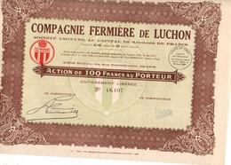 Actions -  COMPAGNIE FERMIERE DE LUCHON  1929 - Elektrizität & Gas
