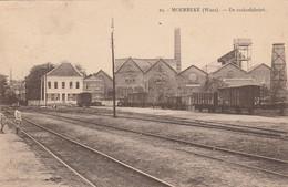 Moerbeke - Waes , De Suikerfabriek ,( Sucrerie , Rapperie, Statie , Station , Gare , Wagon ) - Moerbeke-Waas
