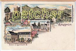 Litho Arzbach (Bad Ems, Westerwald) Gasthaus Zum Nassauer Hof, Um 1900 - Bad Ems