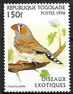 Togo - MNH ** 1996 : Australian Zebra Finch  -  Taeniopygia Castanotis - Songbirds & Tree Dwellers