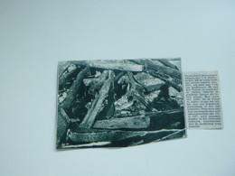 """Origineel Knipsel ( A 127 ) Uit Tijdschrift """" De Stad """"  1933 :  Brand   Nieuwkerken - Zonder Classificatie"""