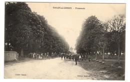 71 SAONE ET LOIRE - TOULON SUR ARROUX Promenade ( Voir Description) - Altri Comuni