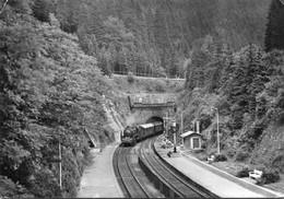 Dampfzug In Oberhof, Gelaufen - Trains