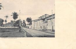 Brazil - BAHIA - Papagaio Itapagipe - Ed. Desconhecido - Salvador De Bahia