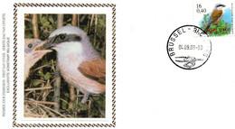 BUZIN - N° 2931 FDC Sur Soie - Pie-grièche écorcheur - Grauwe Klauvier - 1991-00