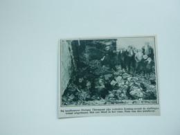 """Origineel Knipsel ( A 143 ) Uit Tijdschrift """" De Stad """"  1933 :  Brand   Lokeren - Zonder Classificatie"""
