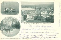 Zug - Stadt Mit Hirschpark + 1901 - ZG Zoug