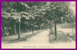 GERARDMER - Promenades Au Bord Du Lac - Promenade - Animée - Cliché C.M. N° 1197 - Gerardmer