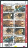 Feuillet De La Série NATURE Des MINERAUX MINERALEN , Pl. 1, Obl; Sc Natuur BRUXELLES 1er Jour 30-06-2003. TB - 16911 - 2001-2010
