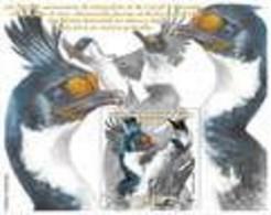 2021-01- TAAF- FSAT- Stamps Face Value Price  CORMORANS     MNH** - Antarctische Fauna