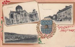 -SINAGOGA-SYNAGOGUE-JUDAICA-JUDISCHE -LA CHAUS DE FONDS-SVIZZERA-SUISSE-CARTOLINA-VIAGGIATA IL 2-2-1913 - Jewish