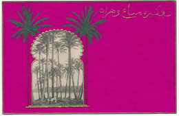 Y184.  Egypte (?) - Embossed Postcard - Unclassified