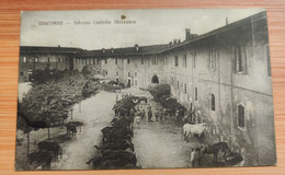 Vigevano Interno Castello Sforzesco - Vigevano