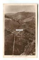 St Helena - Heart Shaped Waterfall - Old Real Photo Postcard - Saint Helena Island