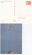 DPP 19/15  X. Kunstausstellung Der DDR - Joan Cozacu - Spaßvögel - Postales Privados - Nuevos