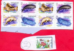 Sea Mammals & Fish Fauna UAE 2004 Cancelled Dugong, Whale Shark, Porpoise, Dolphins, Serranidae - Marine Life