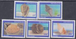 Sénégal N° 1234 / 38 XX Coquillages Les 5 Valeurs Détachées, Sans Charnière, TB - Senegal (1960-...)