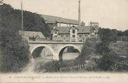 Tanneur Tannerie Et Moulin Placide Peltereau  à Chateau Renault Sur Le Gault  Water Mill    Tannery - Craft