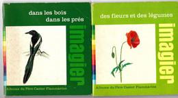 2 Albums Du PERE CASTOR IMAGIER - Des Fleurs Et Légumes, Dans Les Bois Dans Les Prés -1976 - Other