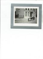 Turnhout - Une Attelage De Boudes (chien)  Mei  1905 - Turnhout