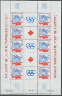 SPM St. Pierre Et Miquelon 1988 Olympic Games Calgary Sheetlet MNH - Invierno 1988: Calgary