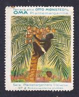 Denmark Poster Stamp Vignette Reklamemarke  BLACK MAN CLIMPING AFTER COCONUT - Erinnophilie