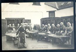 Cpa Du 29  Industrie Sardinière Bretonne -- Engrillage  Des Sardines  -- Douarnenez Usine Amieux Frères NOV20-33 - Douarnenez